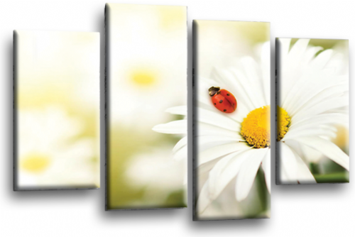 Floral Flower White Daisy Canvas Wall Art Picture Print Split Panel